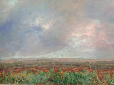 Poppies at Falmer